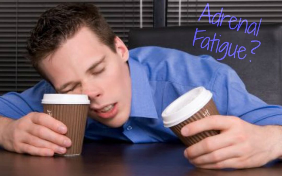 Are Your Adrenal Glands Fatiguing You?