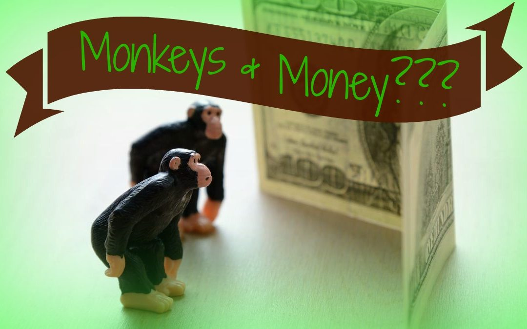 What Do Monkeys and Money Have in Common – Part 1?